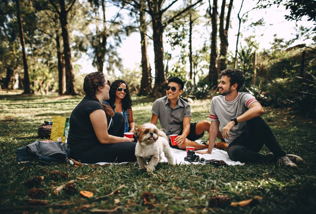 caine pufos la picnic in natura, alături de patru persoane, doi barbati si doua femei