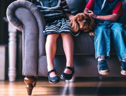doi copii baiat si fata care stau pe canapea iar intre ei se afla un caine pechinez