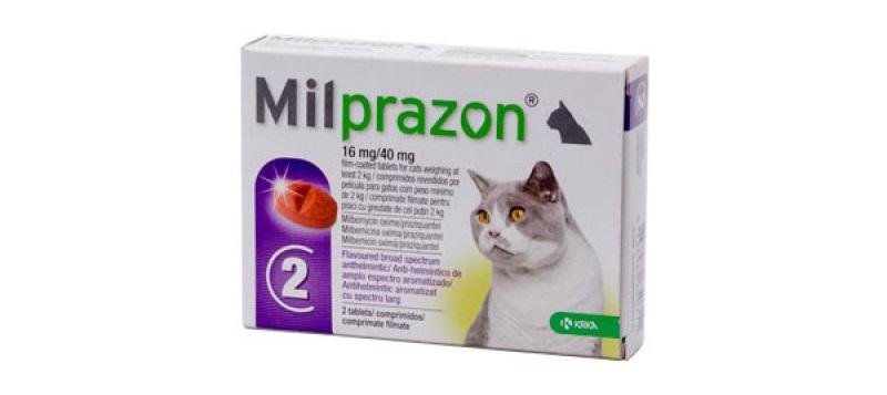 Cutie cu două tablete pentru deparazitare interna Milprazon, pentru pisici intre 2-8 kg pe fundal alb