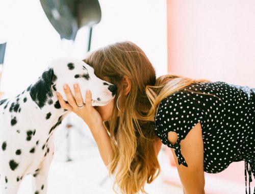 Câine dalmațian mângâiat de o tânără îmbrăcată cu rochie neagră cu buline negre