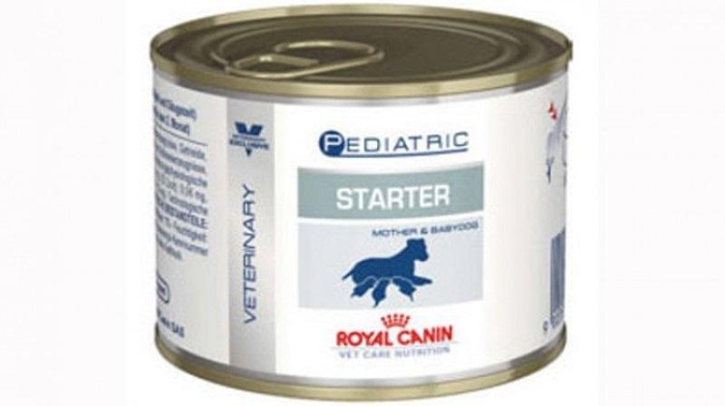 Cutie cu royal canin pediatric starter mousse pe fond alb