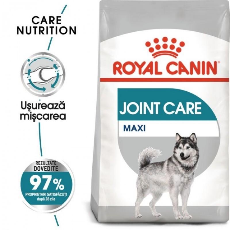 Punga cu royal canin maxi joint care pe fond alb