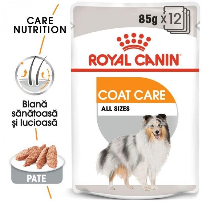 Plic cu hrana umeda Royal Coat Care Pate pe fond alb