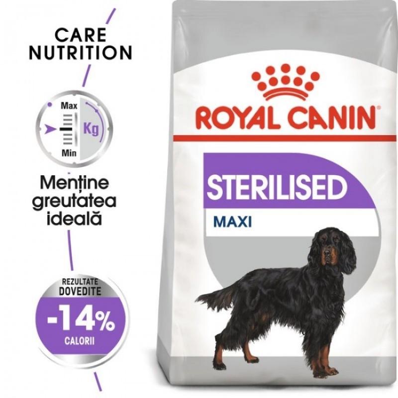 Punga cu hrana uscata Royal Canin Maxi Sterilised Care pe fond alb