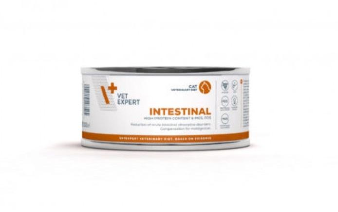Conserva cu hrana umeda 4T Intestinal pe fond alb