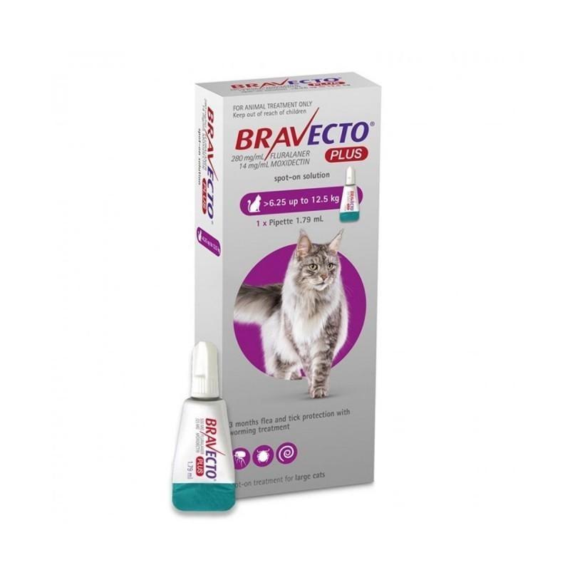 Cutie cu tratament deparazitar Bravecto Plus Spot On pentru pisici intre 6.25 si 12.5kg, 1 pipeta, 500mg, pe fundal alb