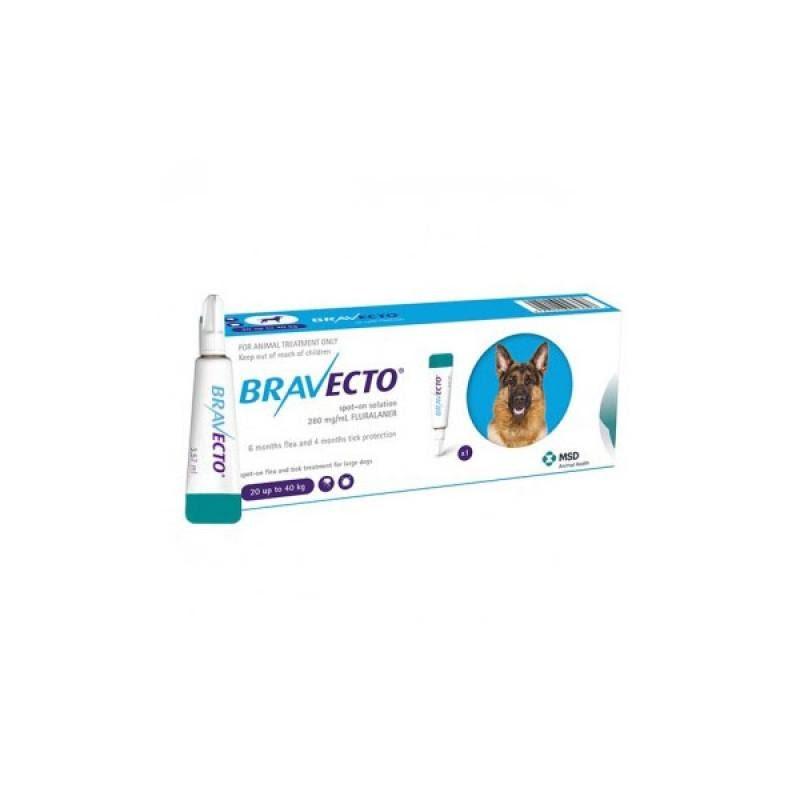 cutie cu pipetă antiparazitară Bravecto pentru câini de 20 - 40kg, pe fundal alb