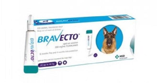 Pipetă și cutie de Bravecto pentru deparazitarea externa a cainilor pe fond alb