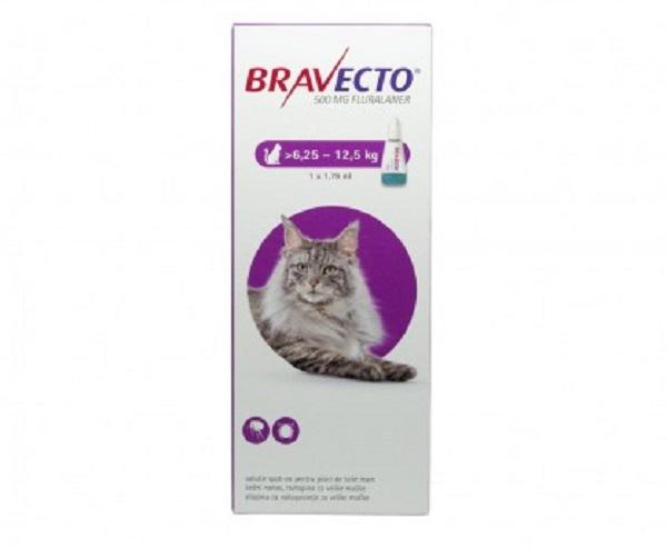 Cutie de Bravecto pentru deparazitarea externa a pisicii pe fond alb