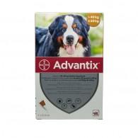 Pipetă antiparazitară Advantix pentru câini de 40-60kg