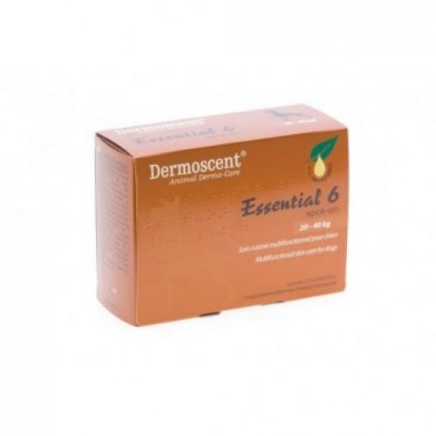 Dermoscent Essential 6 Spot-On Caini 20-40 kg