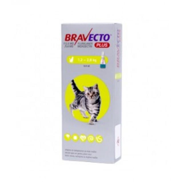 Bravecto Plus Spot On pentru pisici intre 1.2 si 2.8kg, 1 piepta 112.5mg