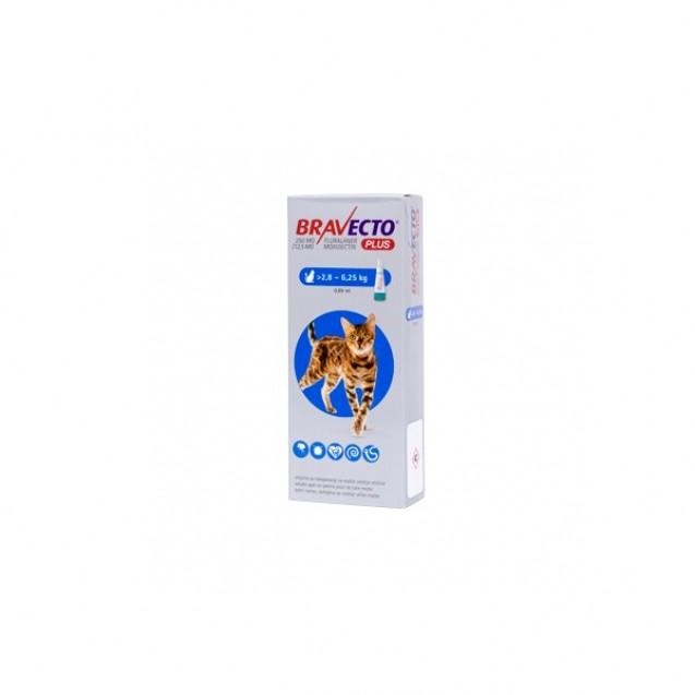Bravecto Plus Spot On pentru pisici intre 2.8 si 6.25kg, 1 pipeta, 250mg