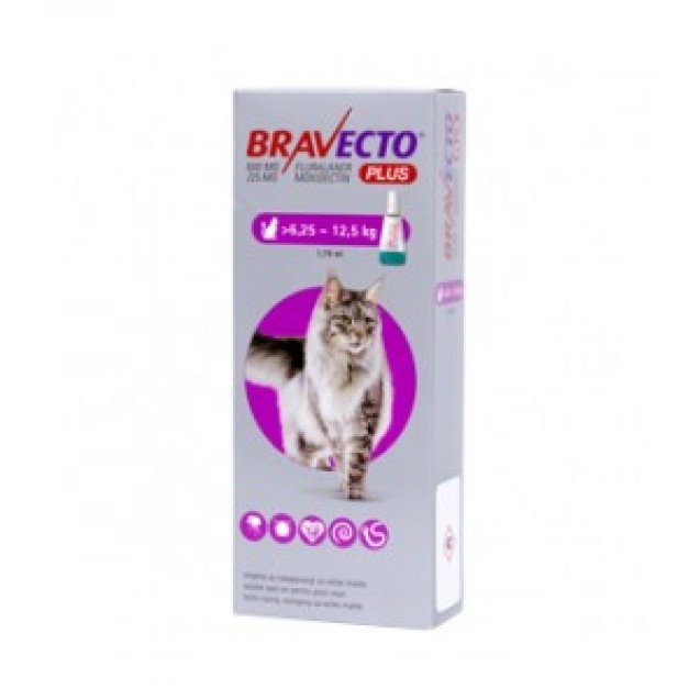 Bravecto Plus Spot On pentru pisici intre 6.25 si 12.5kg, 1 pipeta, 500mg