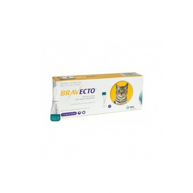 Pipetă antiparazitară Bravecto pentru pisici de 1.2 - 2.8 kg