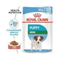 Hrana umeda Royal Canin Mini Puppy Plicuri 12x85g